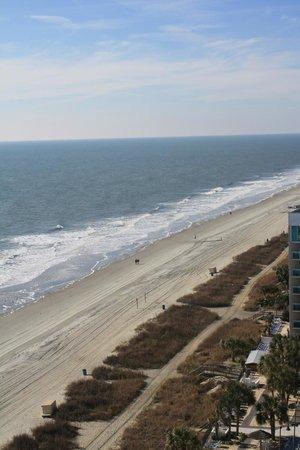 Sea Crest Oceanfront Resort: Balcony view from 1529