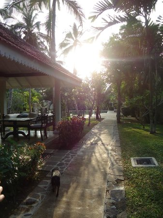 Why House: walking up to the outdoor dining area