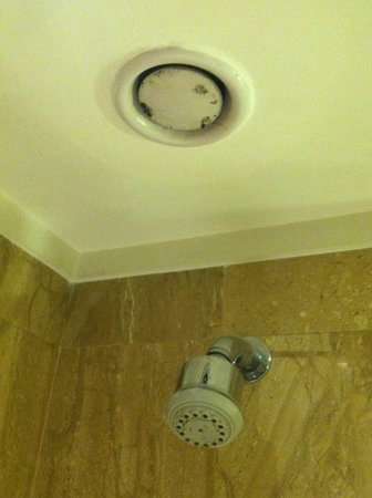 Sheraton New Delhi : mold in shower