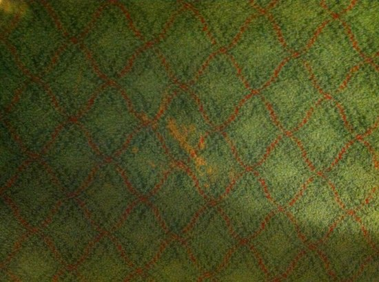 Sheraton New Delhi : Stain on carpet