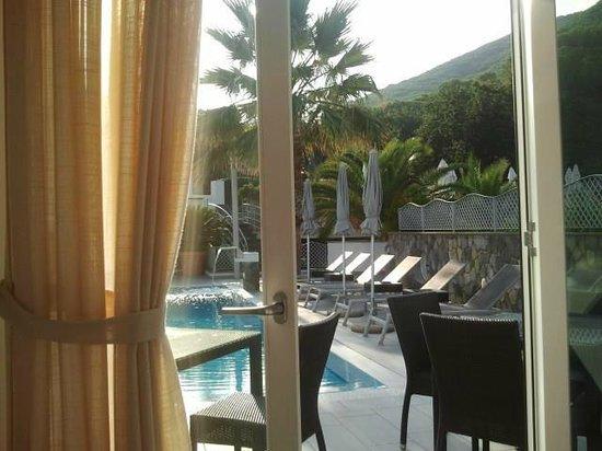 Grifo Hotel Charme & SPA: vista della piscina dal ristorante