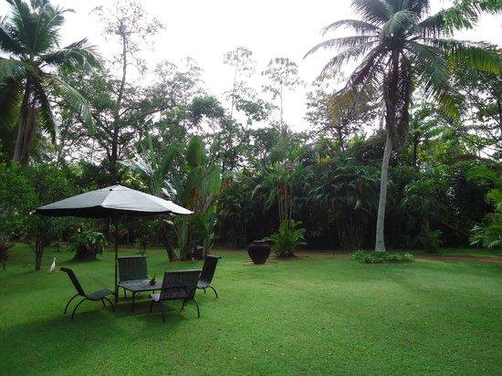 Nisala Arana Boutique Hotel: beautiful surroundings