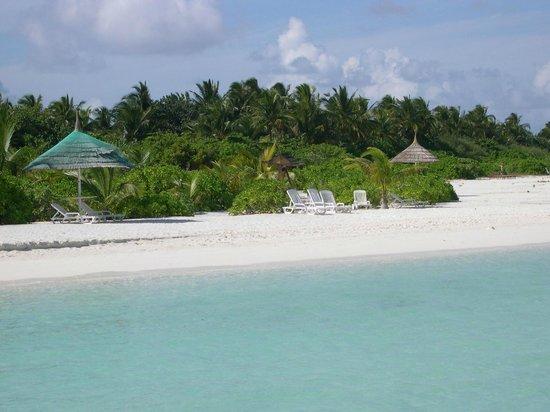 Paradise Island Resort & Spa: The hotel's beach