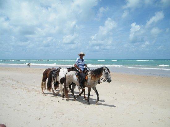Pontal De Ocapora: Passeios a cavalo em frente ao Hotel Pontal de Ocaporã