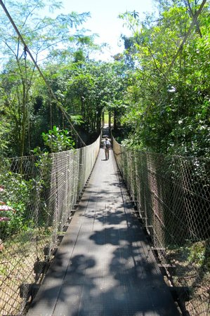 Arenal Observatory Lodge & Spa: Hanging bridge near Lodge.