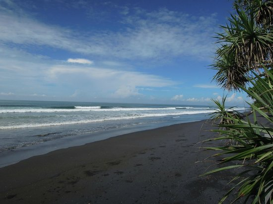 Kelapa Retreat Bali: breiter Sandstrand