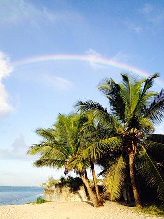 Ocean Two Resort & Residences: Beautiful area