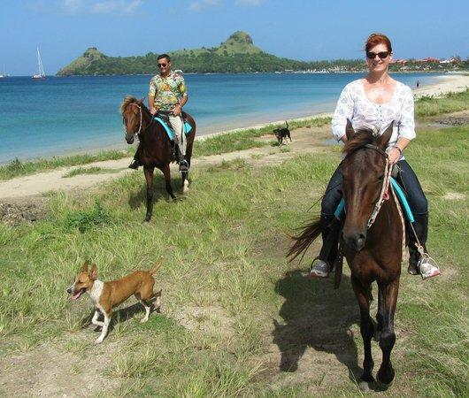 Island Riders : Island riding