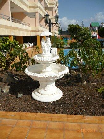 Apartamentos Montemar: Cacti garden