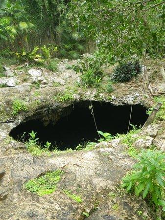 Temple of Doom (Cenote Esqueleto): Where you jump in
