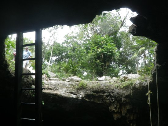 Temple of Doom (Cenote Esqueleto): From inside the cenote