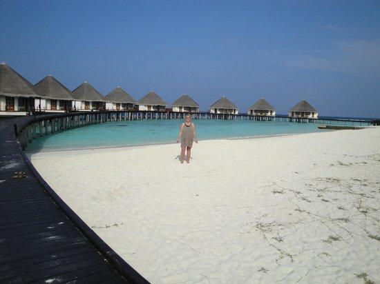Adaaran Prestige Water Villas: Blue sky, blue sea, white sands we will be back!