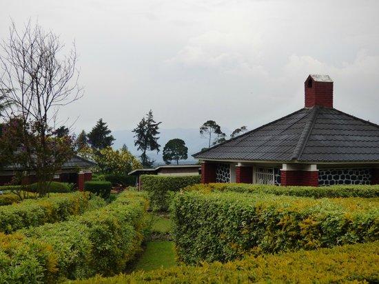Kinigi Guesthouse : Buildings