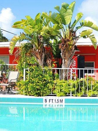 Sea Dell Motel : Office for motel