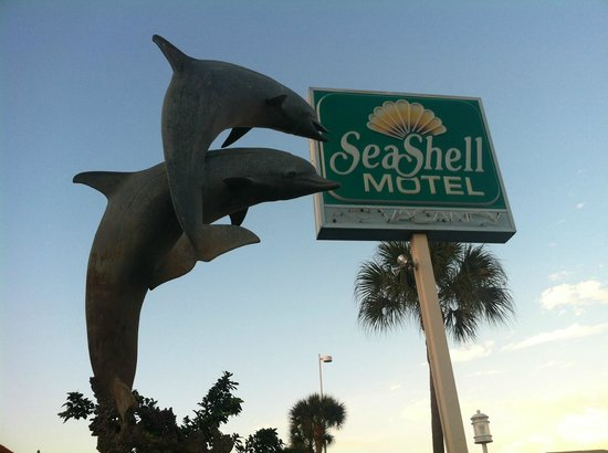Seashell Motel : Dolphins attack the Seashell's signature sign ;)