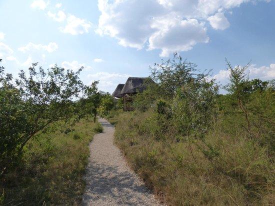 Mburo Safari Lodge: The main lodge