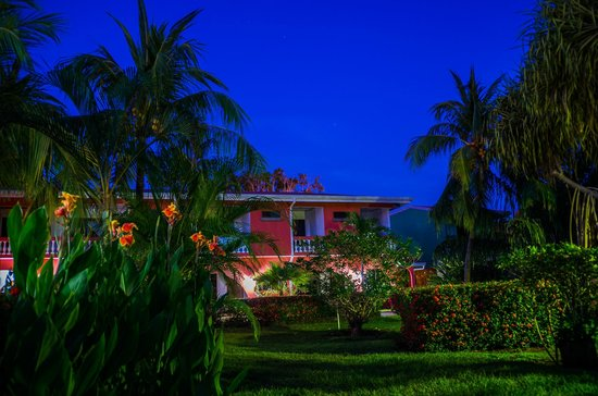 Apartotel Flamboyant: zona del jardín