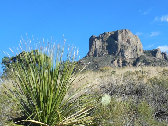 Chisos Mountains Lodge: View from Chisos Lodge