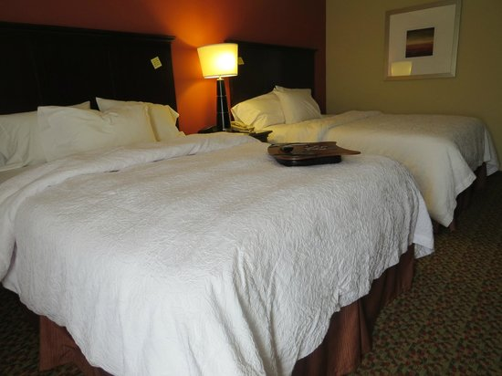 Hampton Inn Mobile I-10/Bellingrath Gardens: Nice comfortable bed!