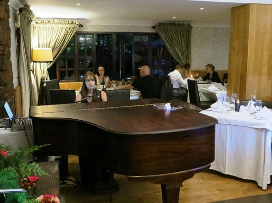 The Meadow Green Restaurant: Pianist