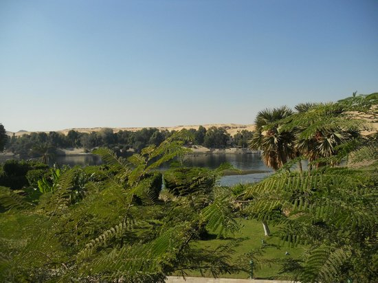 Movenpick Resort Aswan : view from room