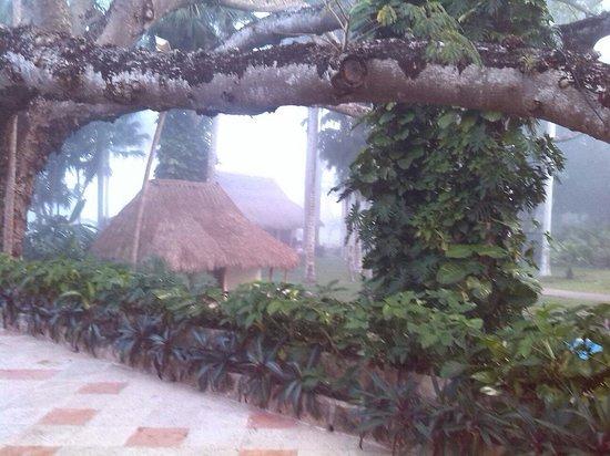Hotel & Bungalows Mayaland: Vista bungalows