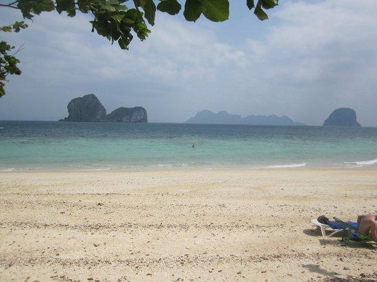 Koh Ngai Resort : Strandausschnitt