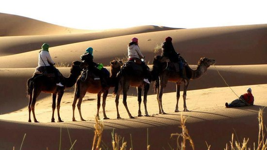 Tour Marruecos Paradise - Day Tours