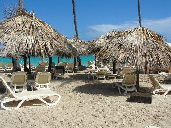 Majestic Elegance Punta Cana: New Ella Beach Area
