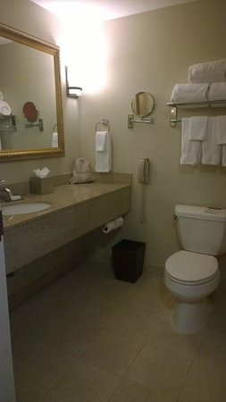 Doubletree by Hilton Sunrise - Sawgrass Mills : Decent bathroom