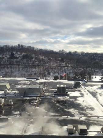 DoubleTree by Hilton Hotel Pittsburgh-Green Tree : View