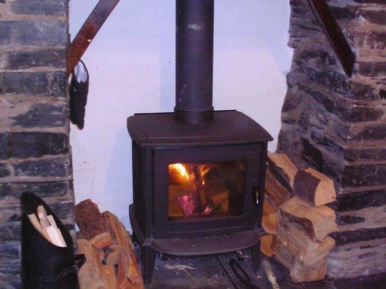 Dolffanog Fach: Log Burner! Very cosy