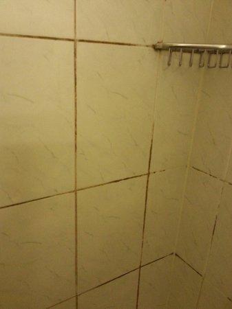 Lansdowne Hotel : The shower