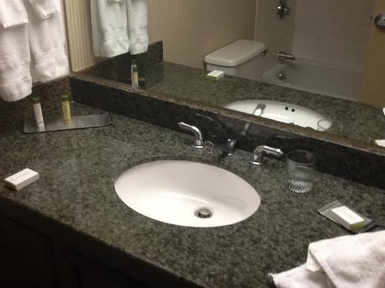 DoubleTree by Hilton Hotel Newark Airport : sink
