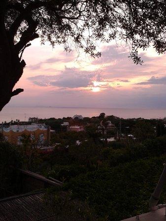 Residence Villa Ravino: tramonto!