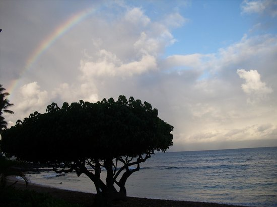 The Napili Bay: Rainbow Sighting