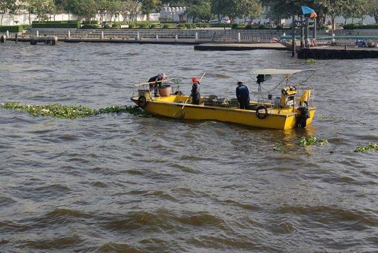Chao Phraya River : Eines der Boote welche Treibgut einsammeln