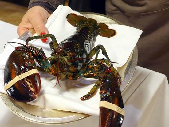 Grand Hotel Les Endroits : Package Dinner - Hello lobster!