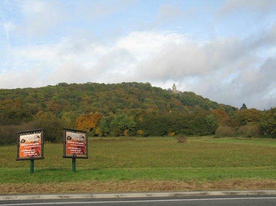 L'Opel zoo e' sito nel mezzo delle colline verdeggianti del parco naturale dell'alto Taunus