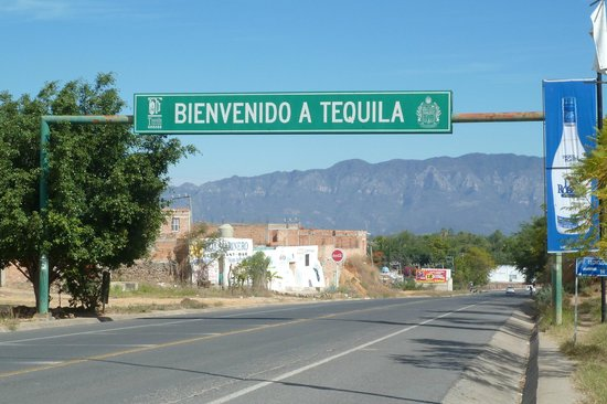 Superior Tours Vallarta: Welcome to Tequila...
