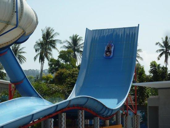 Splash Jungle Waterpark : The Boomerango - my kids' favourite!