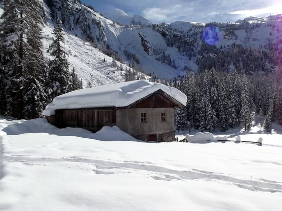 Berghotel Alpenrast: Malga