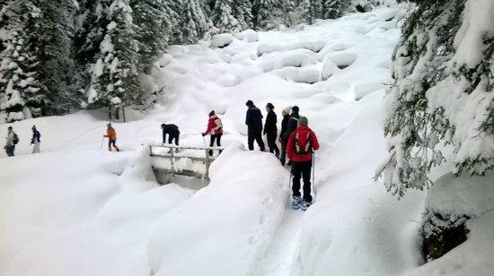 Berghotel Alpenrast : Sentiero ciaspole