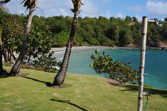Cabier Ocean Lodge: Lodgegelände