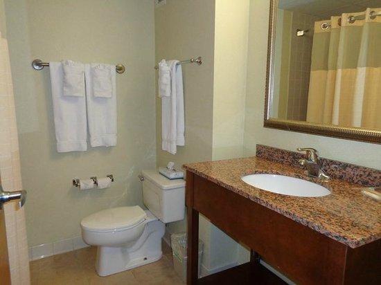 Holiday Inn Rutland-Killington Area: bathroom