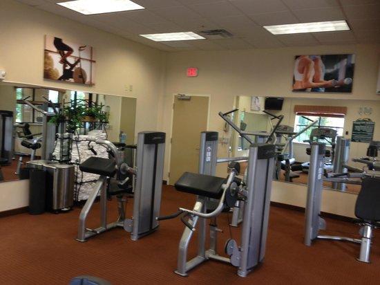 Floridays Resort: Academia fraca