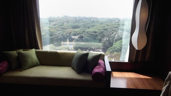 JW Marriott Hotel Bengaluru : View from the large window - treetops