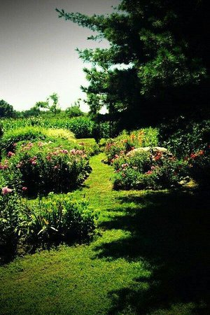T & R Inn Between the Lakes : Gardens and Landscapes at Inn between the lakes