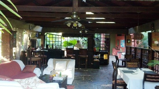 Orchid Tree main gathering area