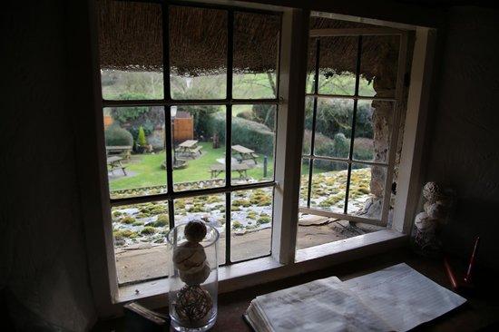 The Falkland Arms : View of the garden.